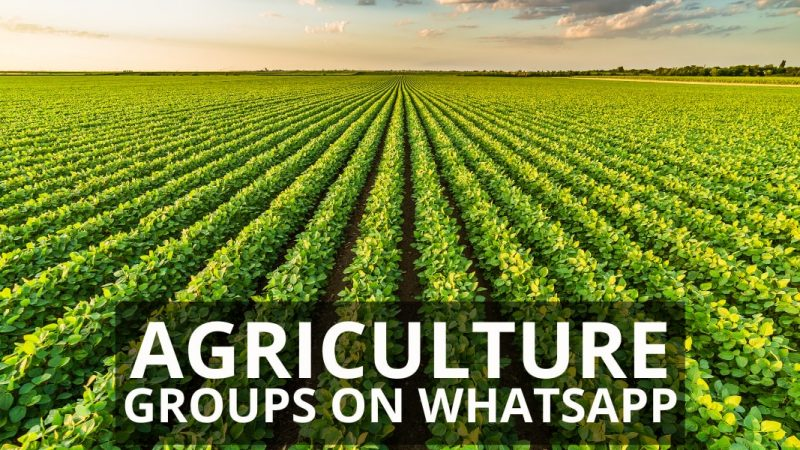 Agriculture WhatsApp Group