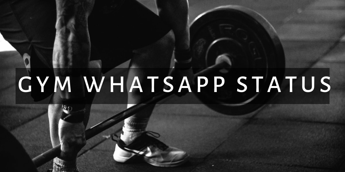 900 Gym Whatsapp Groups Join Link List 2019